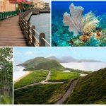 Карибское гражданство за инвестиции: экономический анализ (часть 2)