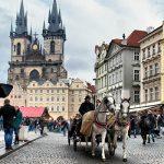 Своё дело в Чехии: первые шаги (часть 2)