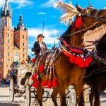 Своё дело в Чехии: первые шаги (часть 3)
