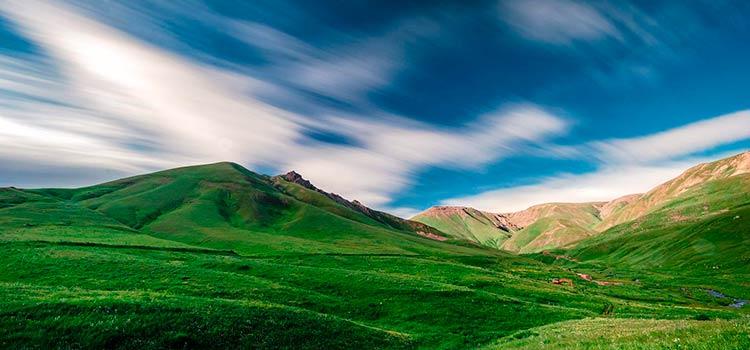 правовые формы юридических лиц в Армении
