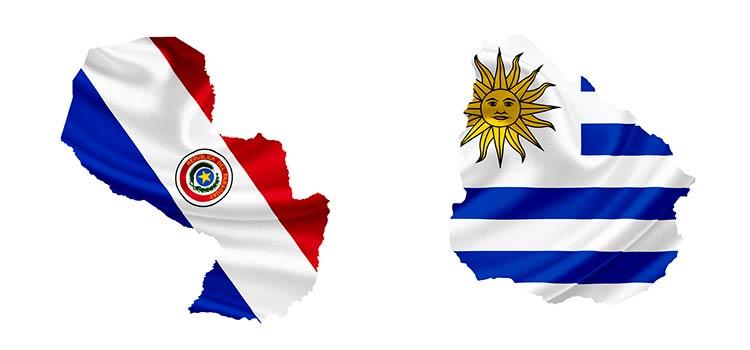 фирмы в Парагвае и Уругвае