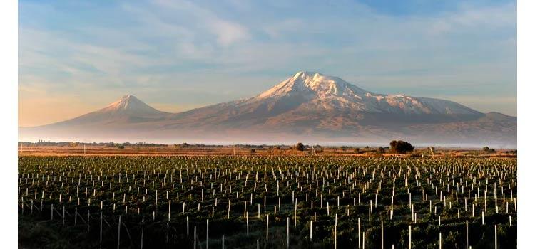 Сельскохозяйственные Земли Армении