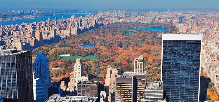 В Нью-Йорке вступил в силу новый закон