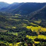 Инвестиции в Парагвай в 2020 году: реалии и перспективы