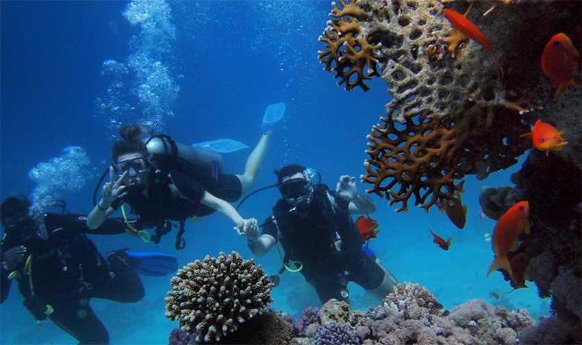 DiveFest Saint Lucia