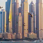Регистрация компании в ОАЭ в 2020 году
