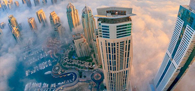 филиал в ОАЭ в 2020 году