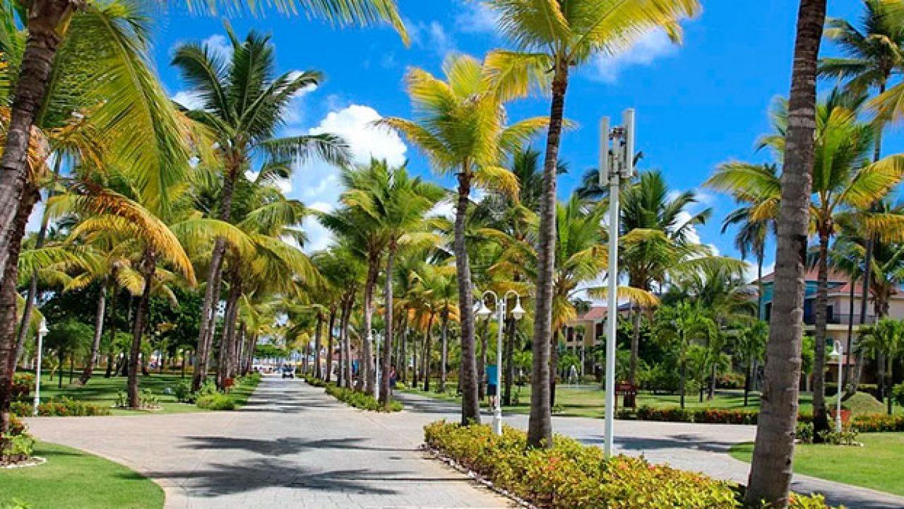 Купить землю в доминиканской республике под постройку grandeur hotel 3 дубай