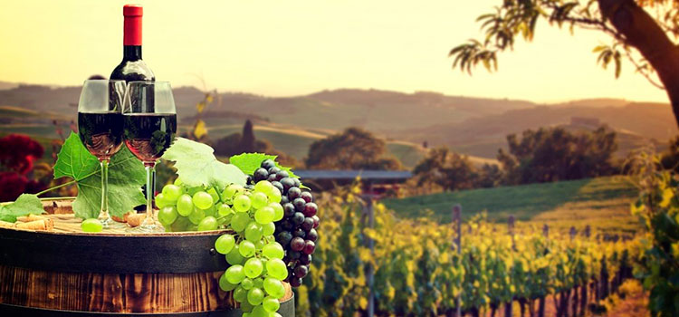 Статистика по экспорту вина в Грузии