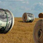 Отмена моратория на продажу земли в Украине – что сулит новый закон?