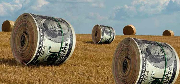 Украина открывает рынок земли