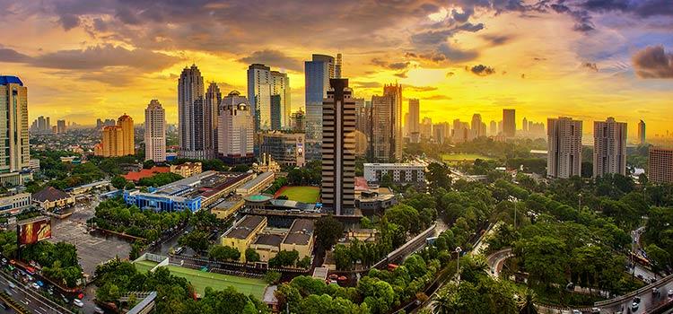 фирмы в Индонезии с иностранным капиталом