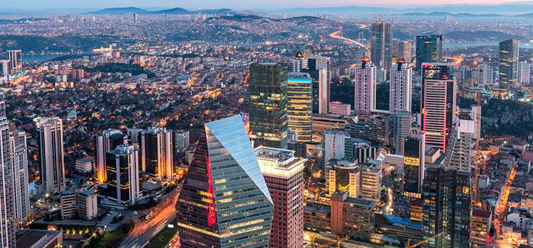 бизнес-план для формирования предприятия в Турции