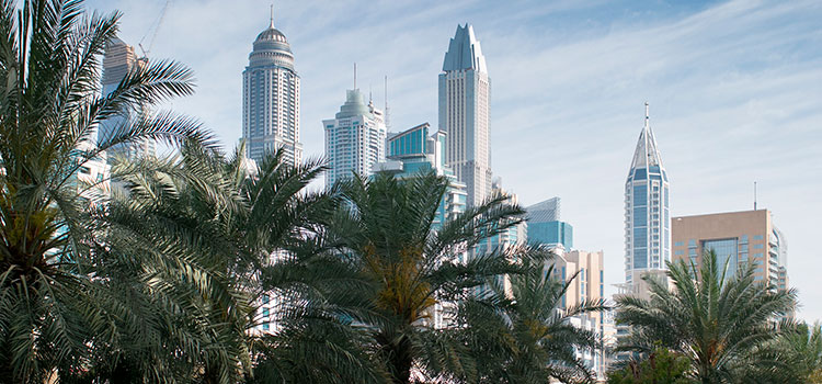 Правила экономического «substance» в ОАЭ. Часть 4