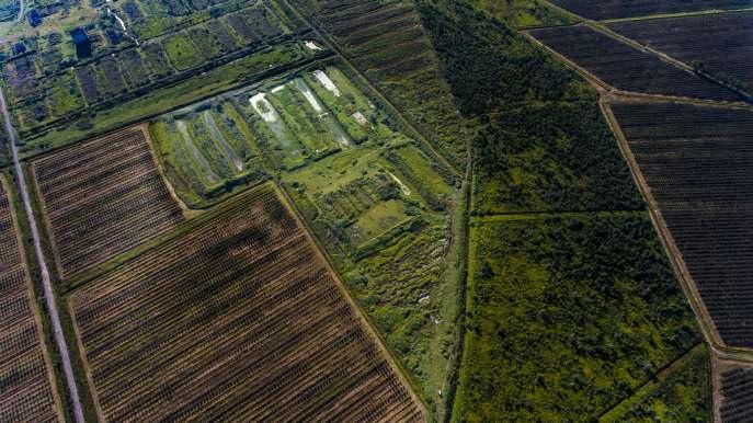 участок земли для крупного рыбного хозяйства в селе Читацкари