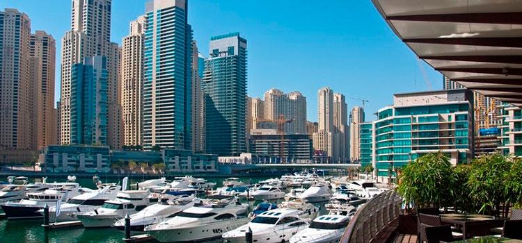 Открытие компании в Дубае