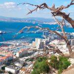Регистрация компании в Гибралтаре + счет в платежной системе Кипра — от 6699 EUR