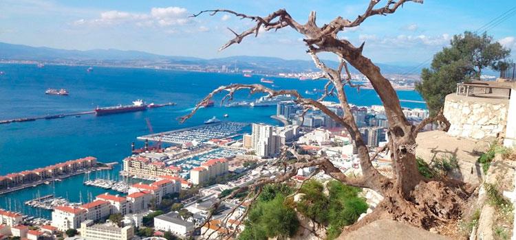 Как зарегистрировать компанию в Гибралтар