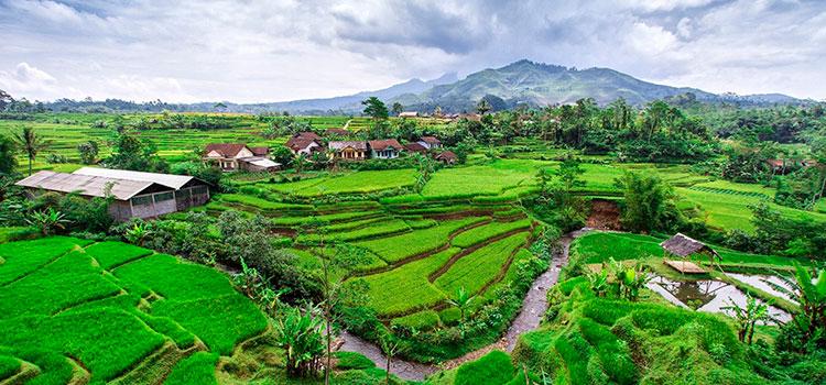 выгодная покупка земли в Индонезии