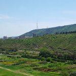 Полная юридическая поддержка и медиация между инвестором и правительством Грузии по проекту: участок земли для жилого комплекса в Тбилиси