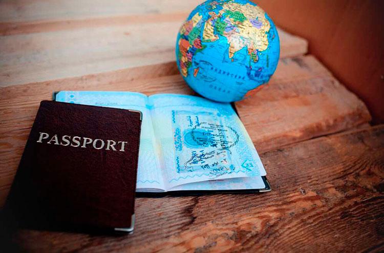 паспорт через иммиграционную схему