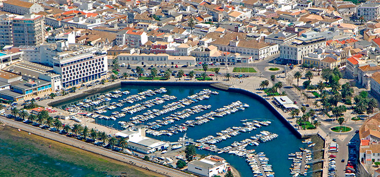 план по созданию компании в Португалии удалённо