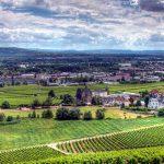 Рейнгау — отдых для переехавших на ПМЖ в Германию в 2020 году