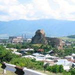Полная юридическая поддержка и медиация между инвестором и правительством Грузии по проекту: участок земли для отельного комплекса в Сурами