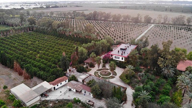 участок с садом в Турции