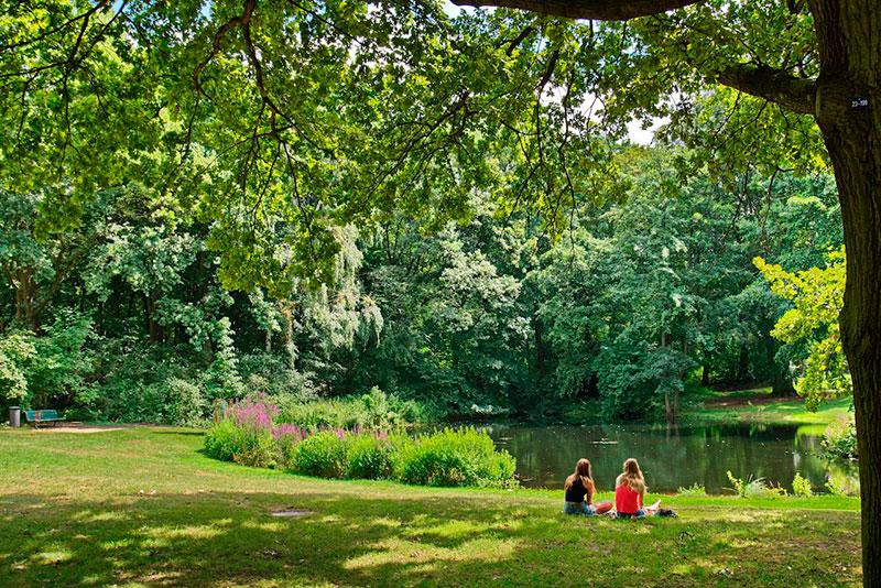 интересные парки в Берлине
