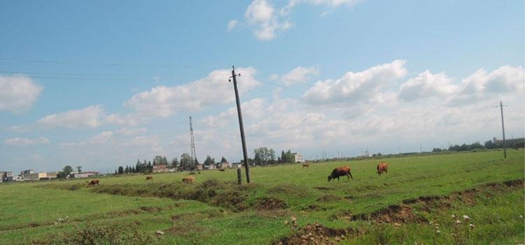 крупный участок земли в Кутаиси