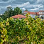 ВНЖ в Португалии для финансово независимых лиц, усадьба с виноградником