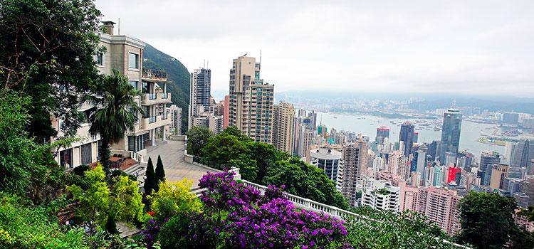 е условия для создания компании в Гонконге