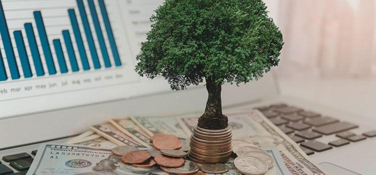 Как выбрать иностранную платежную систему для вашего стартапа?