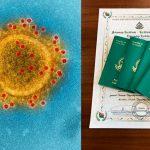 Уханьский коронавирус и гражданство Вануату за деньги: в чем связь?