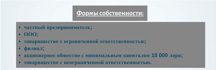 Формы собственности в Грузии