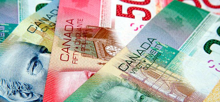 сроки налоговой отчетности стартапов в Канаде