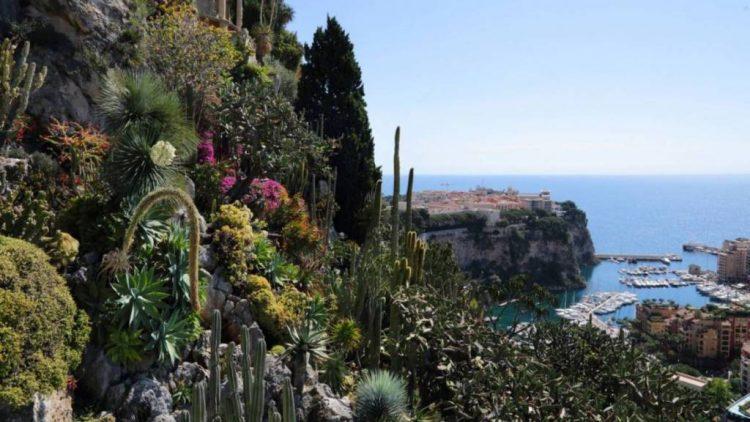 интересные факты о  Экзотическом Саде Монако