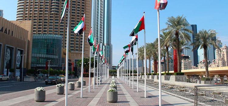 Иммиграция в ОАЭ – что нужно знать о законе о несостоятельности?