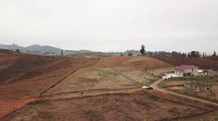 грузинский земельный массив