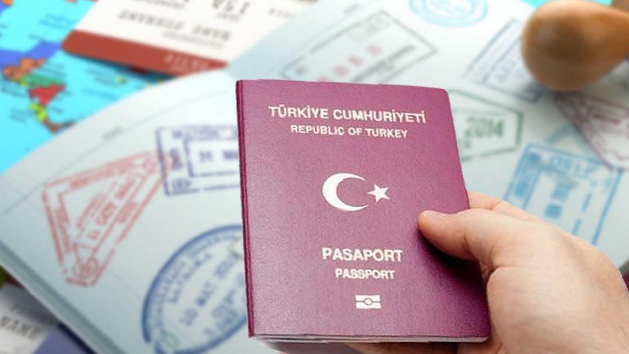 Турецкое гражданство – преимущества, безвизовые страны и E2 виза