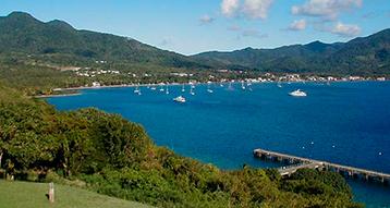 гражданство Доминики предложение