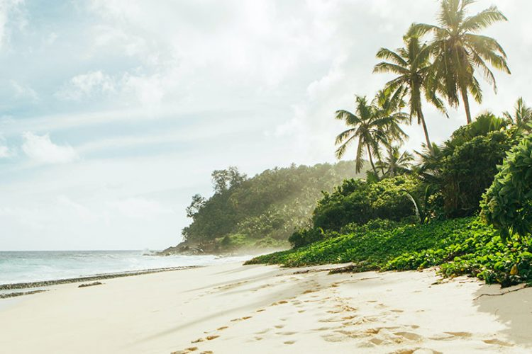BC на Сейшельских островах