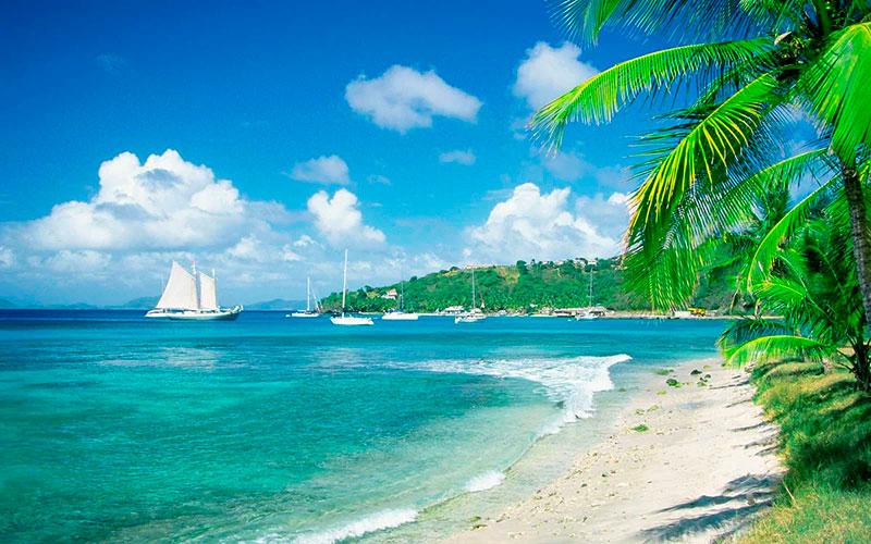 паспорта Доминики, Сент-Люсии