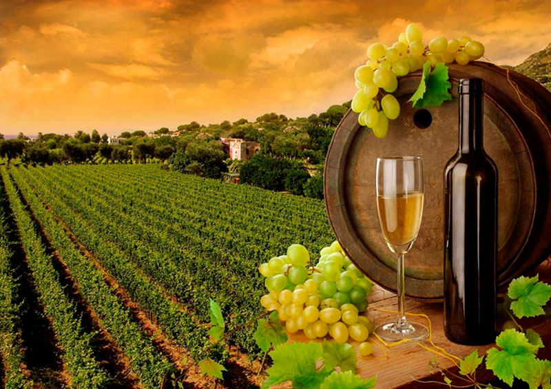 Кто среди грузинских производителей вина