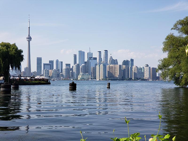 Практика введение публичных регистров для владельцев бизнеса в Канаде в 2020