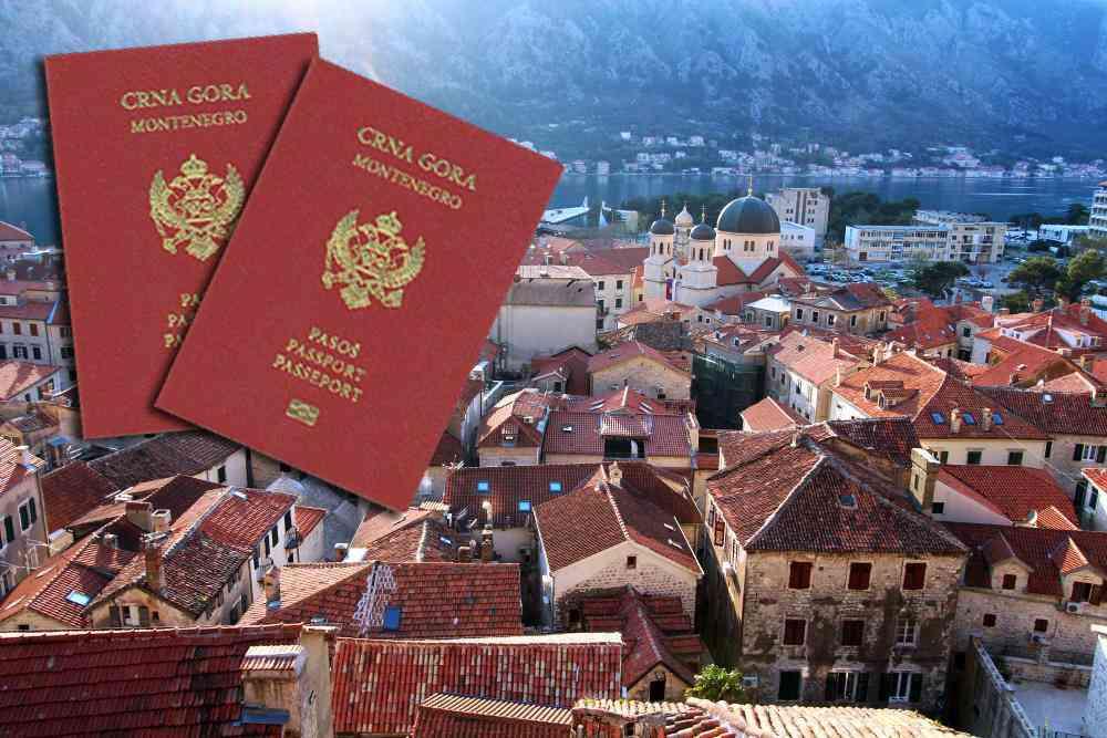 оформить паспорт и гражданство Черногории