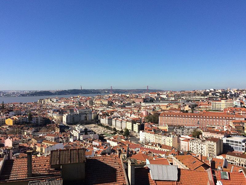 бизнес в Португалии