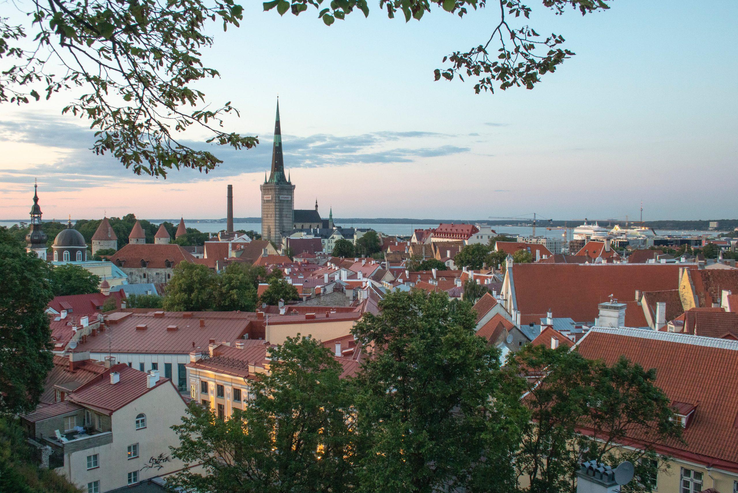 Стартап-виза Эстонии