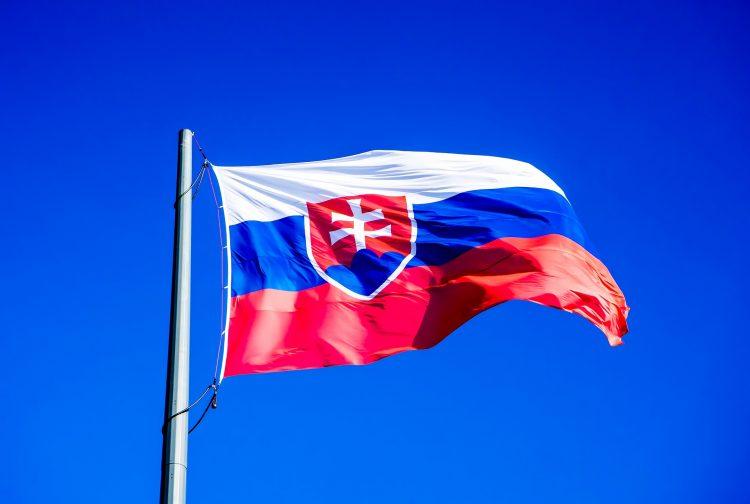 Словакия обучение языку
